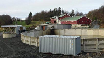 NLR Bioenergi
