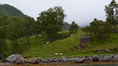 Naturbeitemarka pa Mikkelsnes