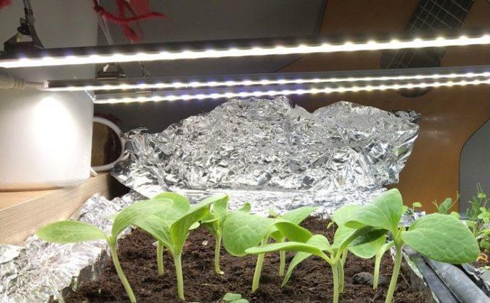 LED og smaskala oppal